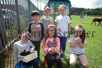 Lucy, Annabelle, Darcy, Daire, Lily and Ellen. R1830019