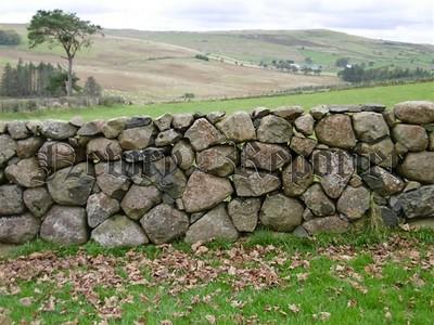 R1920111 wall