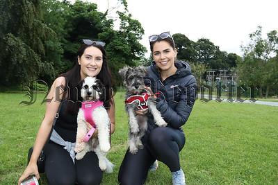 DOG WALK IN KILBRONEY PARK FOR PIPS