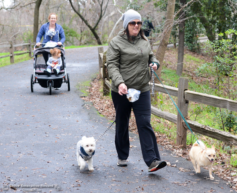. We can thank Candace Bussjaeger for picking up her doggies\' doo walks Riley and Susie Wednesday January 10, 2018 through Five Mile Recreation Area in Chico, California. (Emily Bertolino -- Enterprise-Record)