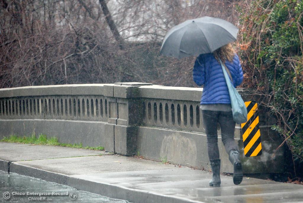 . A lady walks with an umbrella near the Big Chico Creek Bridge on Vallombrosa Ave. as rain falls in Chico, Calif. Mon. Jan. 8, 2018.  (Bill Husa -- Enterprise-Record)