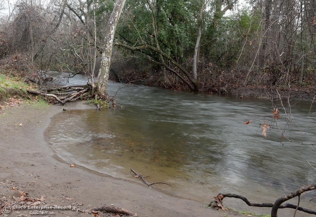 . Big Chico Creek runs high through Bidwell Park in Chico, Calif. Wed. Jan. 10, 2018.  (Bill Husa -- Enterprise-Record)
