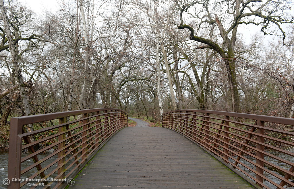 . A footbridge over Big Chico Creek leads the way through a currently leafless forest in Chico, Calif. Wed. Jan. 10, 2018.  (Bill Husa -- Enterprise-Record)