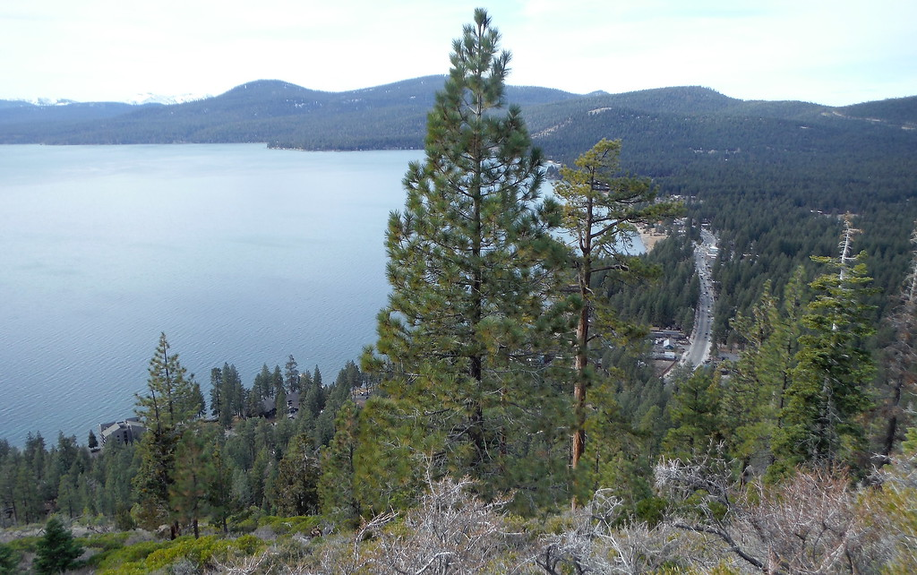 . Kings Beach, Calif. and highway 28 are seen from the Crystal Bay Lookout trail in North Lake Tahoe Monday Jan. 1, 2018. (Bill Husa -- Enterprise-Record)