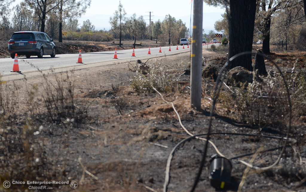 . Vehicles make their way past emergency vehicles and downed telephone lines Thursday after the Honey Run Fire  ran up from Butte Creek Canyon to lower Paradise, Calif. Tuesday. (Bill Husa -- Enterprise-Record)