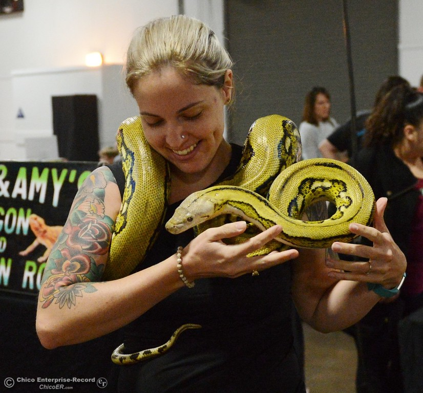 . Andrena Byers holds up a reticulated python which she hopes to take home from the Reptile Show  Saturday October 14, 2017 at the Silver Dollar Fairgrounds in Chico, California. (Emily Bertolino -- Enterprise-Record)