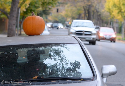 A pumpkin is seen placed on top of a car parked along Cypress St. in Chico, Calif. Tues. Nov. 15, 2016. I have been wondering what to do with my leftover halloween pumpkin but had not thought of this one.  (Bill Husa -- Enterprise-Record)