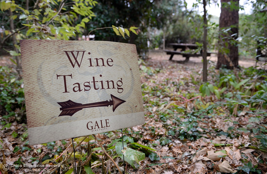 . A sign points the way to wine tasting at Gale Vinyards in Durham, Calif. Fri. Nov. 3, 2017. (Bill Husa -- Enterprise-Record)