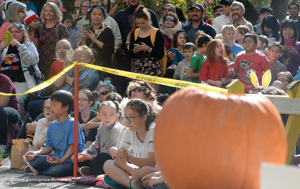 . Students cheer as representatives from the Society of Physics Students and the Department of Physics at CSUC give a lesson on gravity by dropping pumpkins off of Butte Hall during the 30th annual Pumpkin Drop Tues. Oct. 31, 2017.  (Bill Husa -- Enterprise-Record)