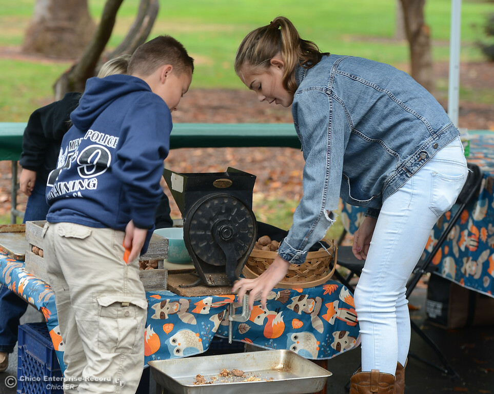 . Adam Simpson, 9, and Emery Doornbos, 13, work to crack walnuts during the Farm City Celebration Harvest Festival Saturday November 4, 2017 at the Bidwell Mansion in Chico, California. (Emily Bertolino -- Enterprise-Record)