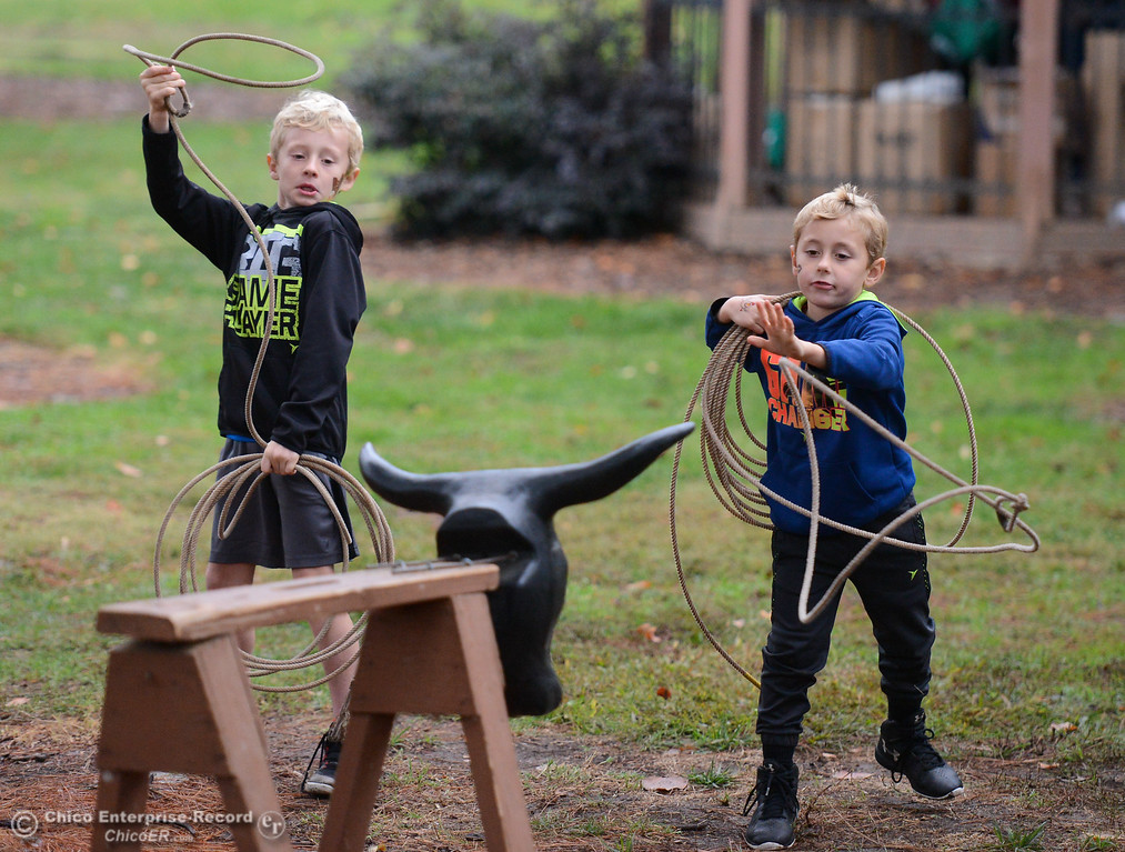 . Brothers Emmet Young, 8, and Aaron try to lasso a bull during the Farm City Celebration Harvest Festival Saturday November 4, 2017 at the Bidwell Mansion in Chico, California. (Emily Bertolino -- Enterprise-Record)
