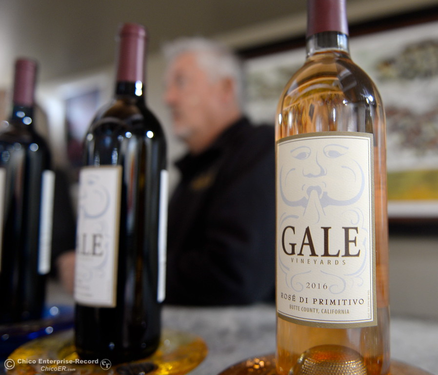 . Steve and Creasia Gale talk about their grapes at the tasting room of Gale Vinyards in Durham, Calif. Fri. Nov. 3, 2017. (Bill Husa -- Enterprise-Record)