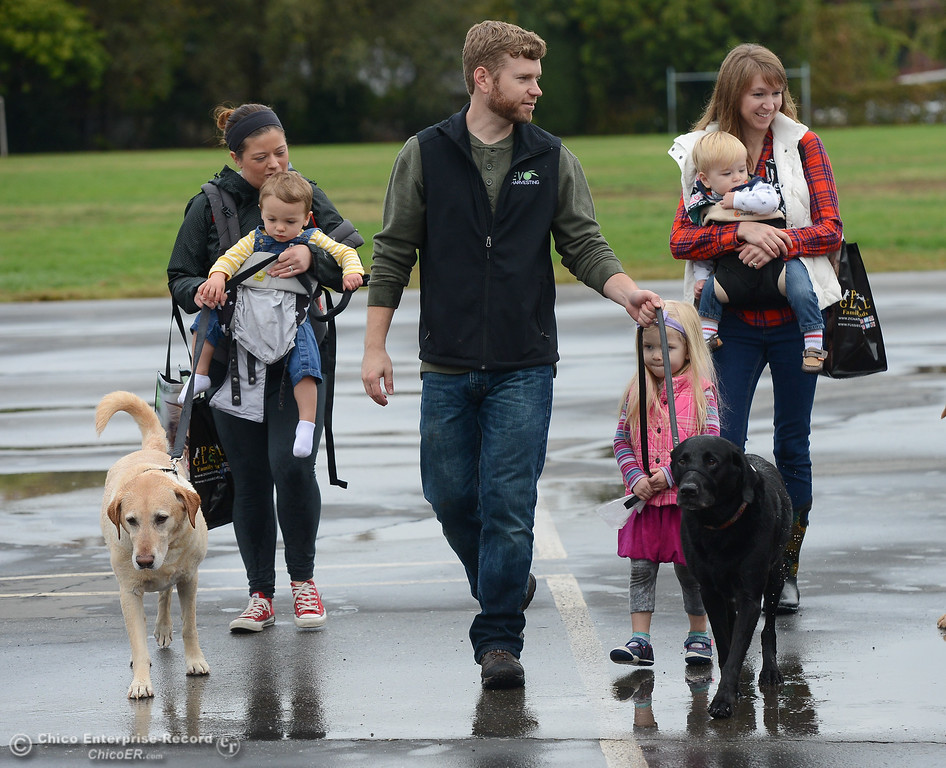 . Families walk their dogs through the 4th annual Soggy Dog Day, a dog fundraiser and free pet health fair Saturday November 4, 2017 at Shapiro Pool in Chico, California. (Emily Bertolino -- Enterprise-Record)