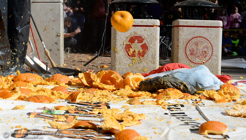 . Pumpkins splatter and students cheer as representatives from the Society of Physics Students and the Department of Physics at CSUC give a lesson on gravity by dropping pumpkins off of Butte Hall during the 30th annual Pumpkin Drop Tues. Oct. 31, 2017.  (Bill Husa -- Enterprise-Record)