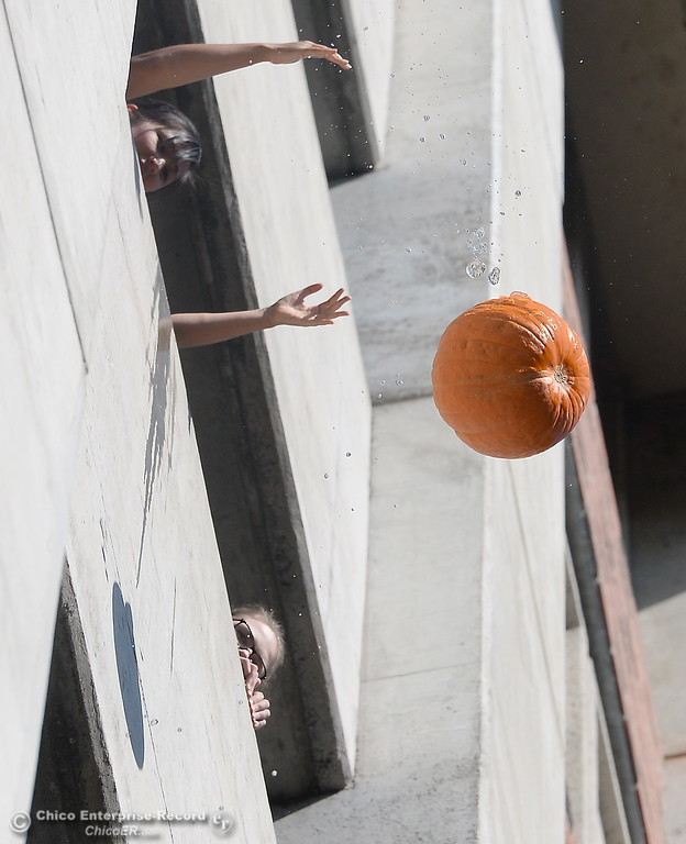. Igor drops a pumpkin while students cheer as representatives from the Society of Physics Students and the Department of Physics at CSUC give a lesson on gravity by dropping pumpkins off of Butte Hall during the 30th annual Pumpkin Drop Tues. Oct. 31, 2017.  (Bill Husa -- Enterprise-Record)