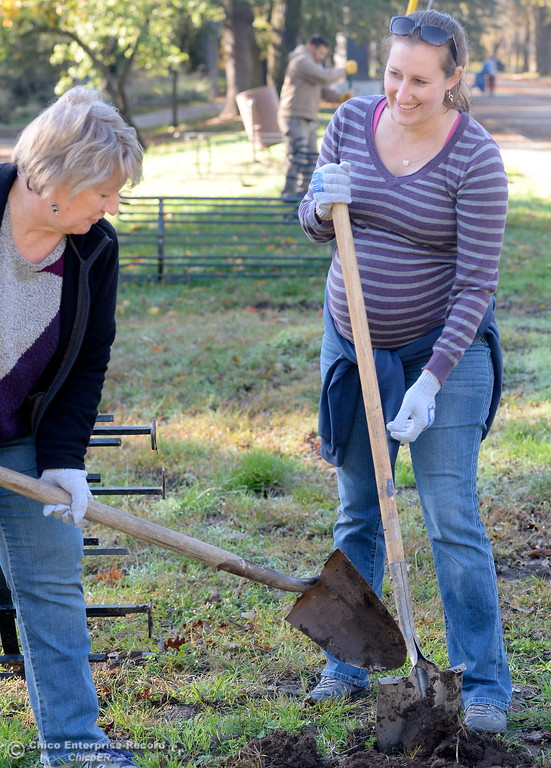 . Shelley Corley left and her daughter Marrisa Stoller help plant Valley Oak Trees with the Chico Tree Advocates and the City of Chico around One Mile Recreation Area of Bidwell Park Tues. Nov. 28, 2017. (Bill Husa -- Enterprise-Record)