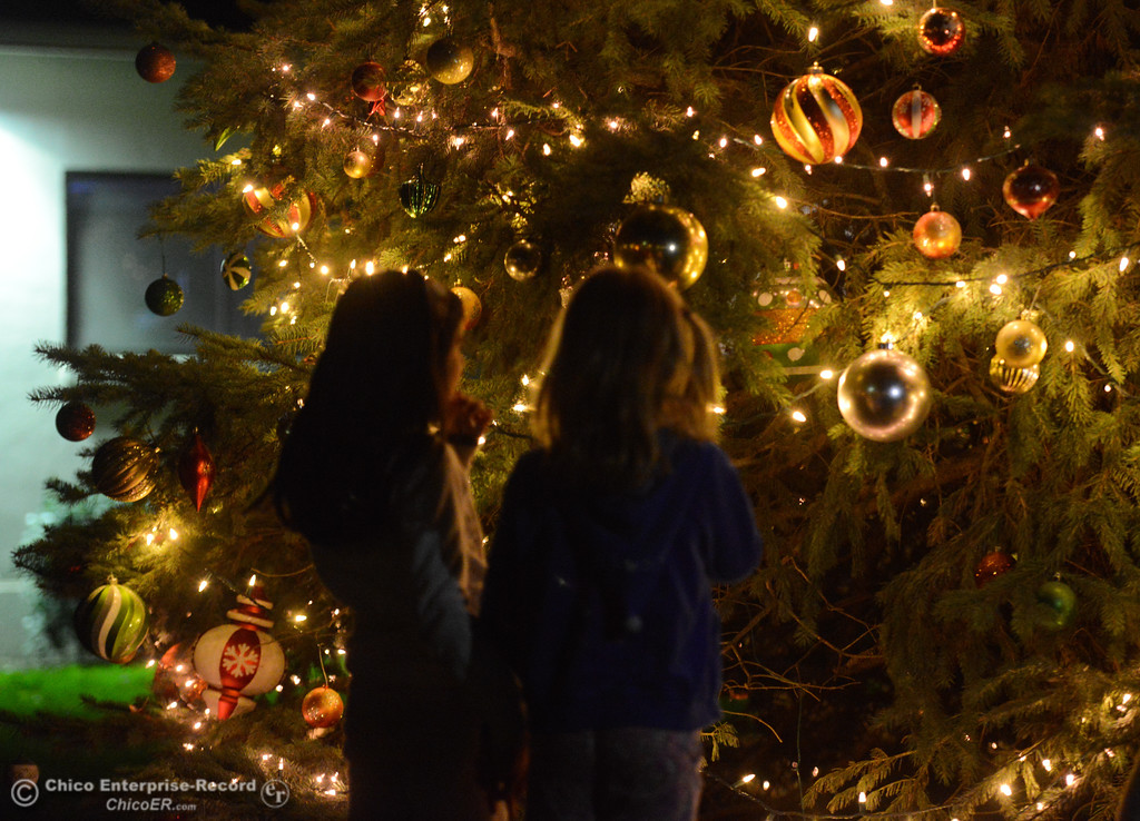 . Children play under the Christmas tree during Enloe\'s annual tree lighting ceremony Tuesday November 28, 2017 in Chico, California. (Emily Bertolino -- Enterprise-Record)
