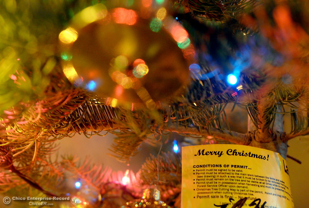 . A Christmas Tree permit obtained from the Butte Meadows Work Center remains on a tree decorated Saturday Nov. 25, 2017.  (Bill Husa -- Enterprise-Record)