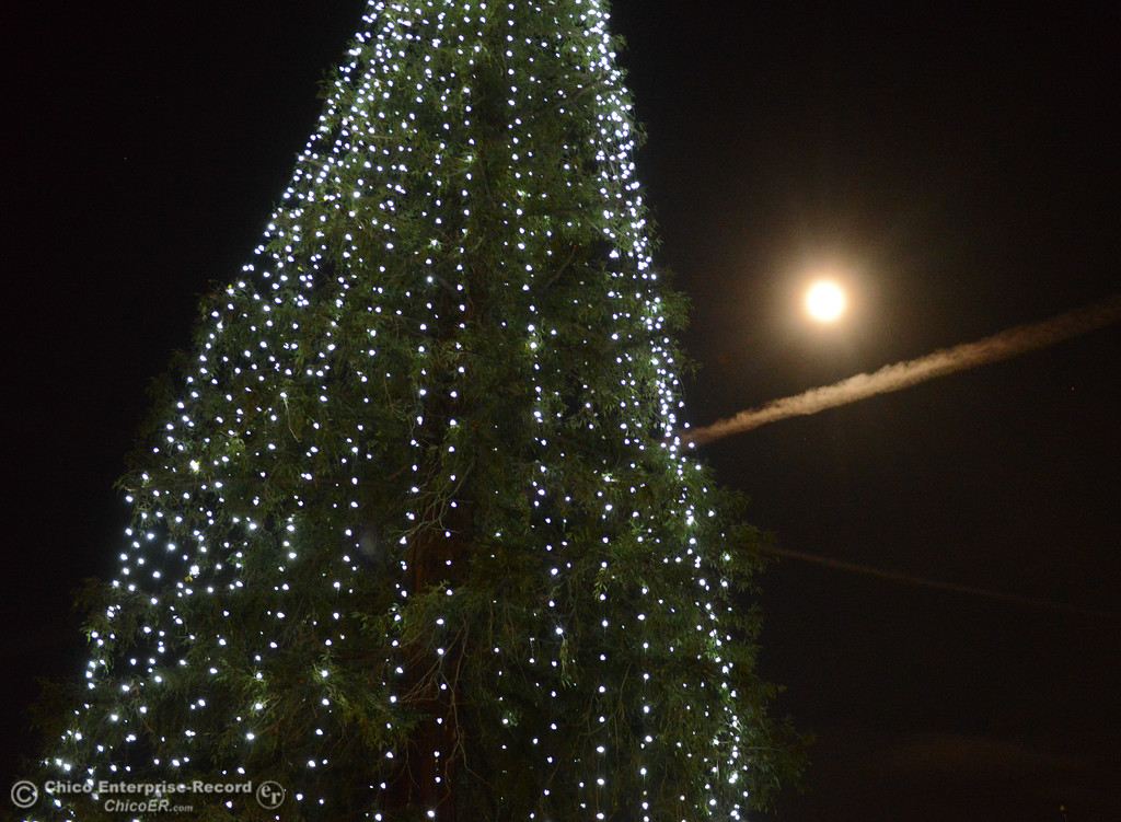 . The moon shines bright during the lighting of the Annual Community Christmas Tree Friday December 1, 2017 in Chico, California. (Emily Bertolino -- Enterprise-Record)Friday December 1, 2017 in Chico, California. (Emily Bertolino -- Enterprise-Record)