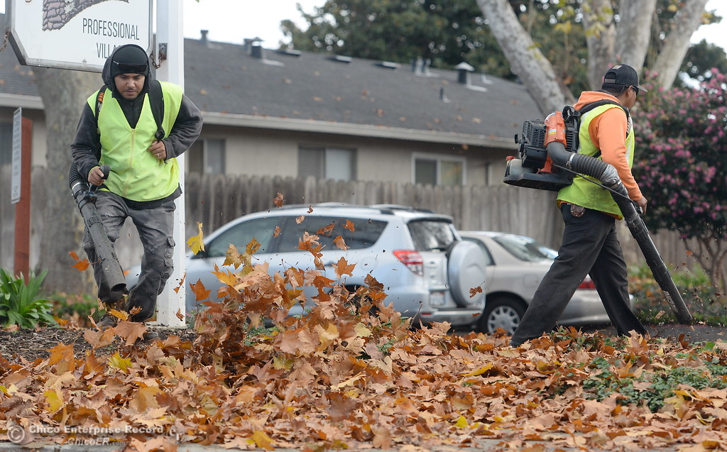 . PLM Landscape Professionals Michael Aguinaga left and Richard Priest get after some leafs on a property along Rio Lindo Ave. in Chico, Calif. Monday Nov. 27, 2017. (Bill Husa -- Enterprise-Record)