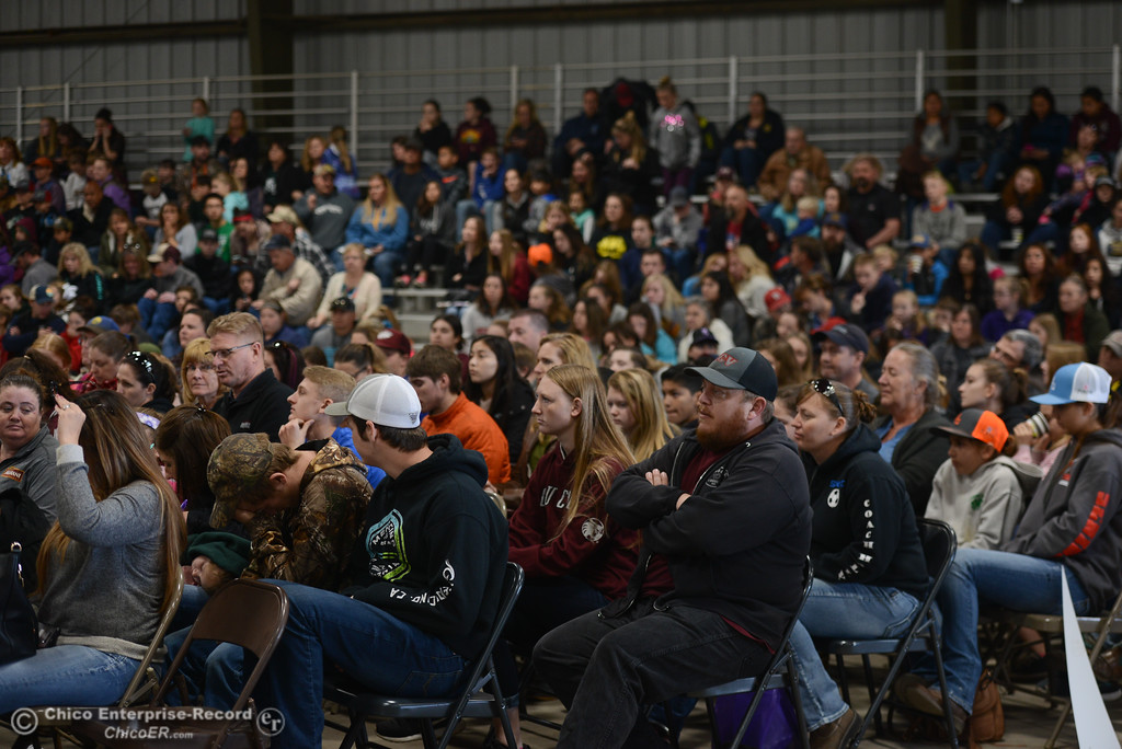 . The crowd at Chico State Farm\'s Sheep and Goats Education Day, Saturday, February 10, 2018, in Chico, California. (Carin Dorghalli -- Enterprise-Record)