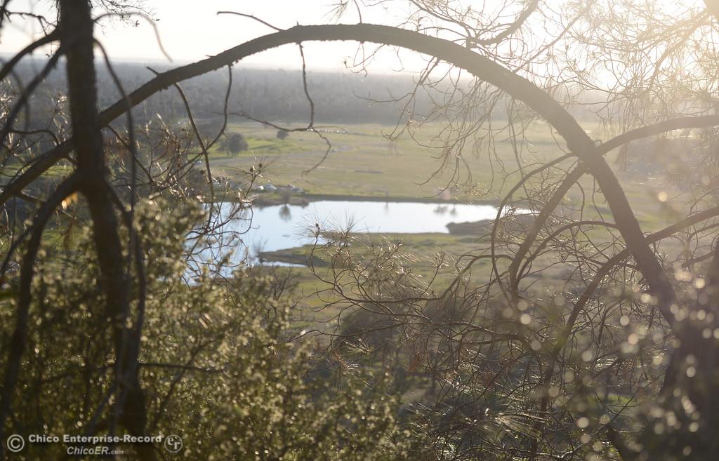 . Horseshoe Lake seen through trees, Thursday, February 8, 2018, in Chico, California. (Carin Dorghalli -- Enterprise-Record)