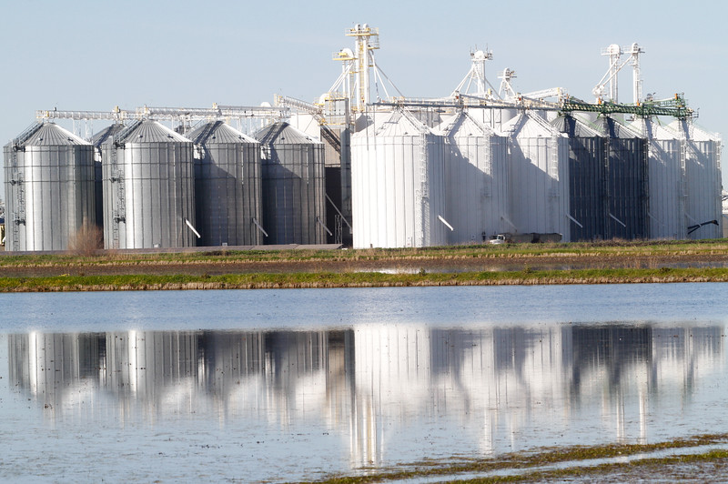 Silos reflect off a flooded rice bed January 30, 2017 in Richvale, California. (Emily Bertolino -- Enterprise-Record)