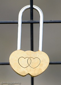 """Locks of every shape, size, brand and style have been accumulating on the barrier fence at Lookout Point since shortly after the fence was erected. They've been known as """"Locks of Love"""" or """"Love Locks"""" by some. Many are marked with messages or decorated in one way or another dedicated to a lover, a friend or a relative who has passed. (Bill Husa -- Enterprise-Record)"""