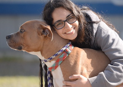 Butte Humane Society Adoptions Manager Meagan Dallas gives a dog named Rocky a little love Wed. March 8, 2017. Animals will be given away free of charge to qualified adopting dog parents during the Empty the Shelter Event March 18th. (Bill Husa -- Enterprise-Record)