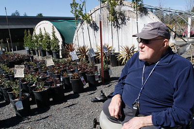Jerry Mendon gives a tour of his nursery March 13, 2017 at Mendon's Nursery in Paradise, California. (Emily Bertolino -- Enterprise-Record)