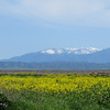 Snow on the Coastal Range mountains, as seen from Glenn County Tuesday, March 15, 2016. (Heather Hacking-Enterprise-Record).