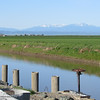 Looking west from along an irrigation canal in Glenn County, Tuesday, March 15, 2016. (Heather Hacking-Enterprise-Record)