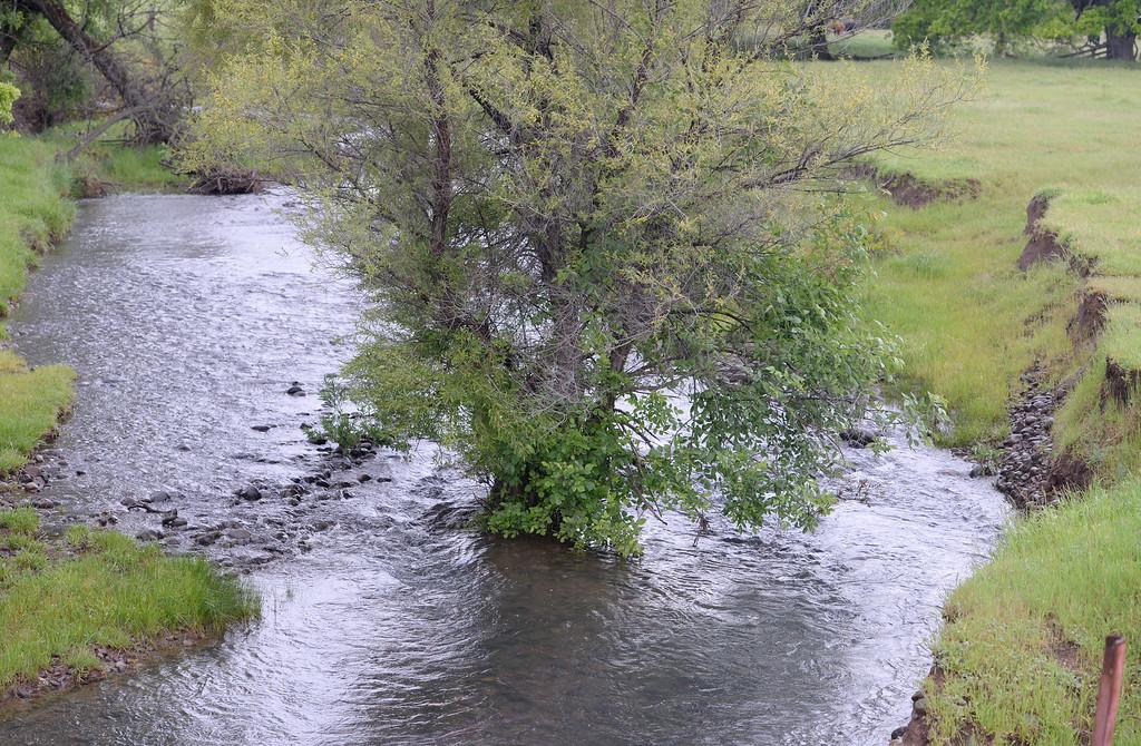 . A small creek drains rain runnoff near Durham Pentz Rd. at    the Berry Canyon bridge Tuesday April 11, 2017.  (Bill Husa -- Enterprise-Record)
