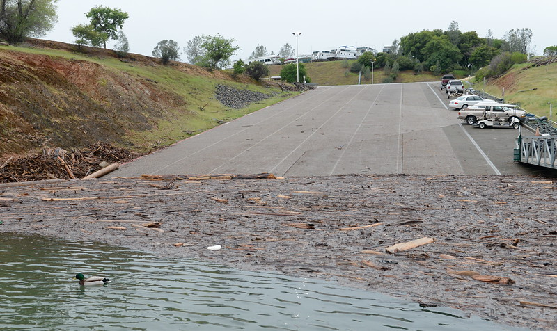 Lake Oroville is open for recreation despite debris piles near the launch ramp at Forever Resorts Limesaddle Marina Tuesday April 11, 2017. Floating debris seems a bit more than usual and is likely due to runnoff and the rising, falling of the lake levels during this wet winter. (Bill Husa -- Enterprise-Record)