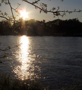 The sun sets behind the Sacramento River near the Woodson Bridge State Recreation Area Saturday April 8, 2017. (Bill Husa Photo)