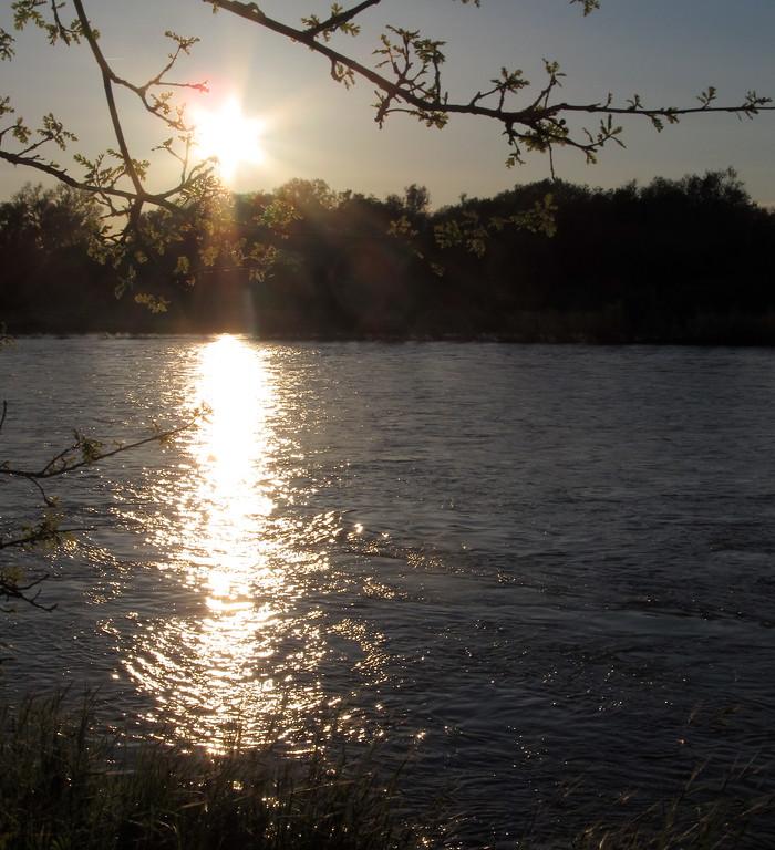 . The sun sets behind the Sacramento River near the Woodson Bridge State Recreation Area Saturday April 8, 2017. (Bill Husa Photo)