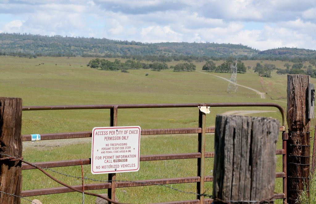 . An area adjacent to Upper Bidwell Park used for cattle grazing is seen with a special access sign in Chico, Calif. Tues. April 17, 2018.  (Bill Husa -- Enterprise-Record)