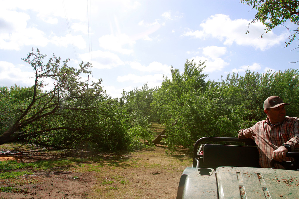 . Glenn Mendonca stops a quad near where PG&E cut 70 trees Friday, April 27, 2018, under transmission lines on Mendonca Orchards property in Chico, California. (Dan Reidel -- Enterprise-Record)