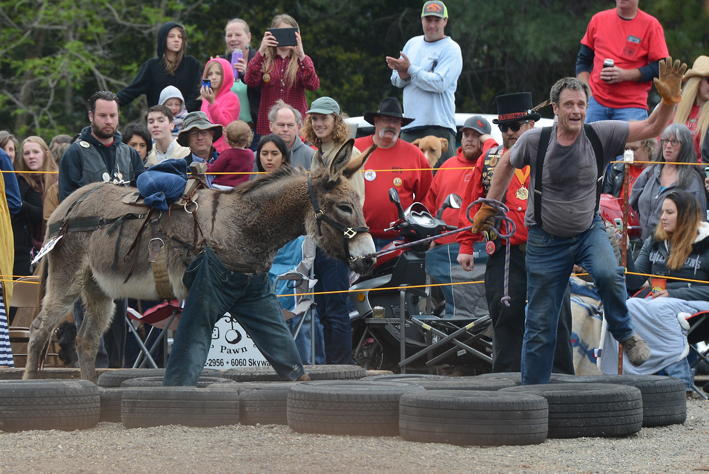 . Dave Greslie participates in the Donkey Derby for the 45th year in a row, April 28, 2018,  in Paradise, California. (Carin Dorghalli -- Enterprise-Record)