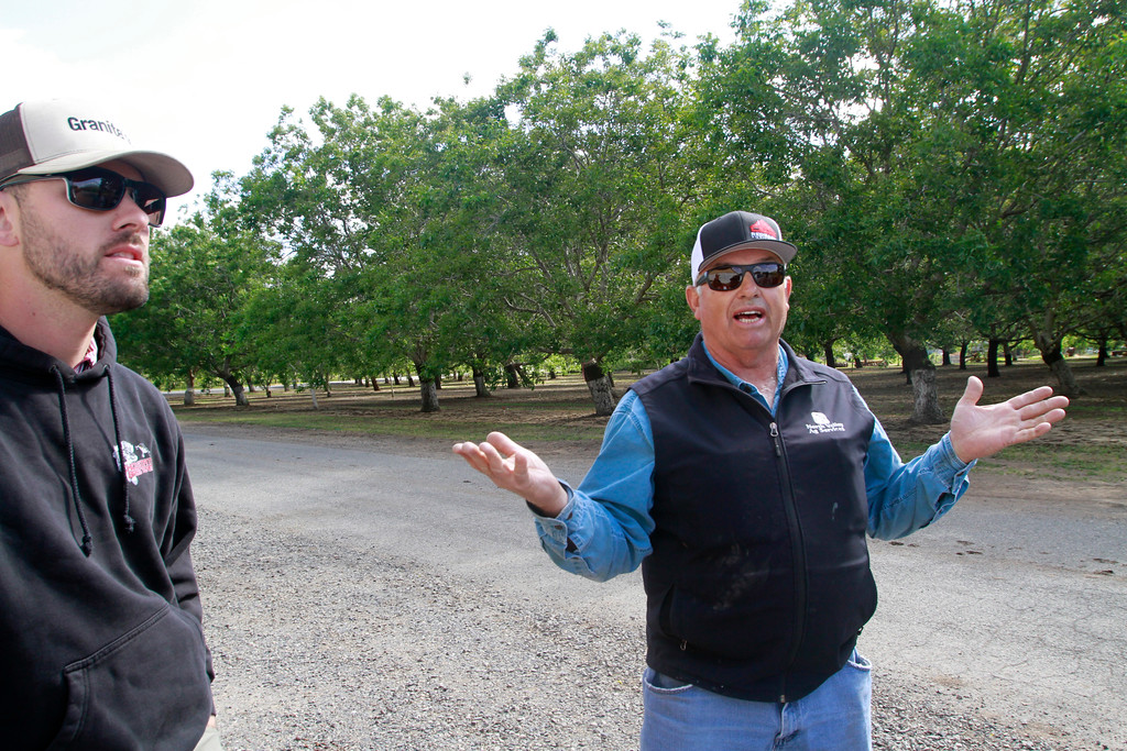 . Andrew Mendonco, left, and Alvin Mendonco, right, talk about how PG&E cut 70 trees Friday, April 27, 2018, under transmission lines on Mendonca Orchards property in Chico, California. The mulitgrnerational farmers say PG&E wouldn\'t work with them and cut down 20 year-old trees just a few months before harvest. (Dan Reidel -- Enterprise-Record)