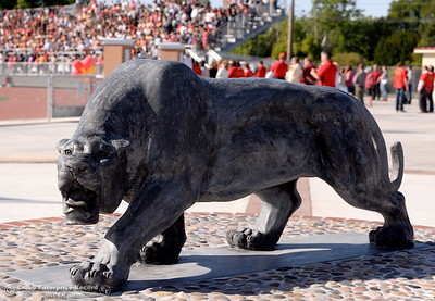 A new Panther statue is unvieled during a celebration of the new Chico High School stadium Friday May 11, 2018.  (Bill Husa -- Enterprise-Record)
