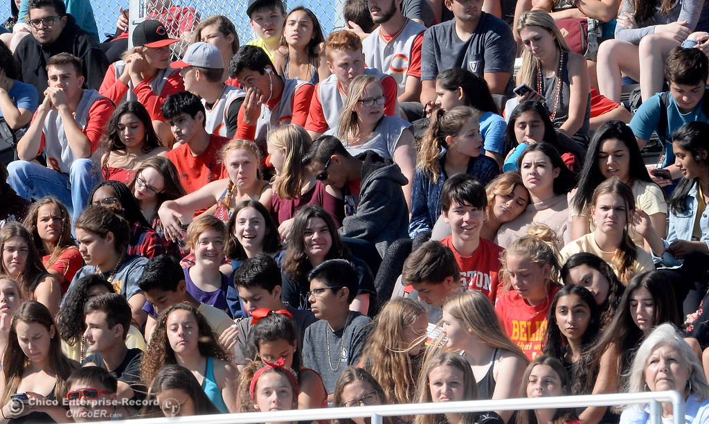 . The Chico High student body applauds after the unvieling of a Panther statue during a celebration of the new Chico High School stadium Friday May 11, 2018.  (Bill Husa -- Enterprise-Record)