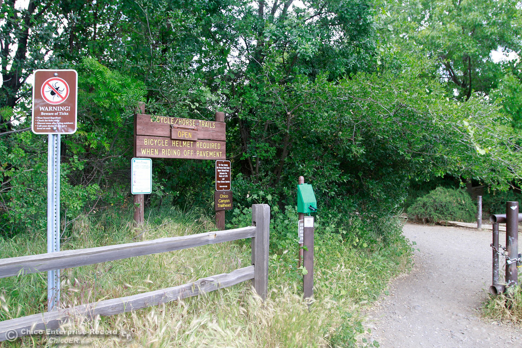 . Wildlife comes out Monday, April 30,2018, along the Chico Canyon trail in Bidwell Park in Chico, California. (Dan Reidel -- Enterprise-Record)