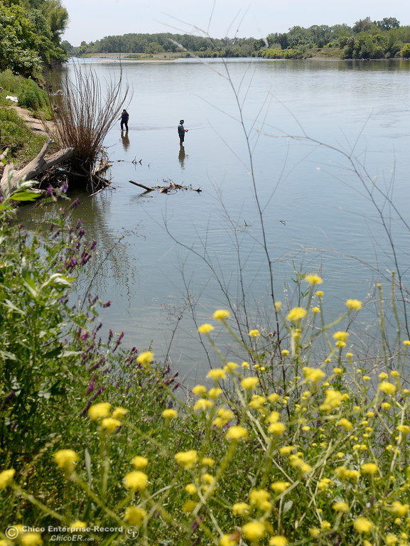 . People fish and sunbath along the Sacramento River in Chico, Calif. Friday May 4, 2018. (Bill Husa -- Enterprise-Record)