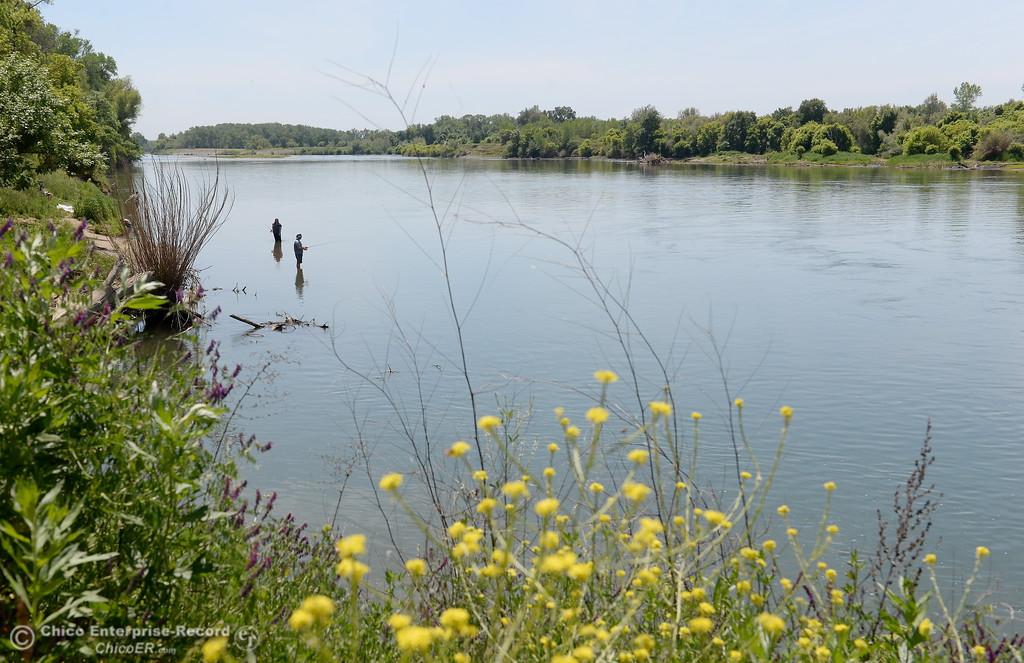 . People fish and sunbath along the Sacramento River in Chico, Calif. Friday May 4, 2018. (Bill Husa -- Enterprise-Record)