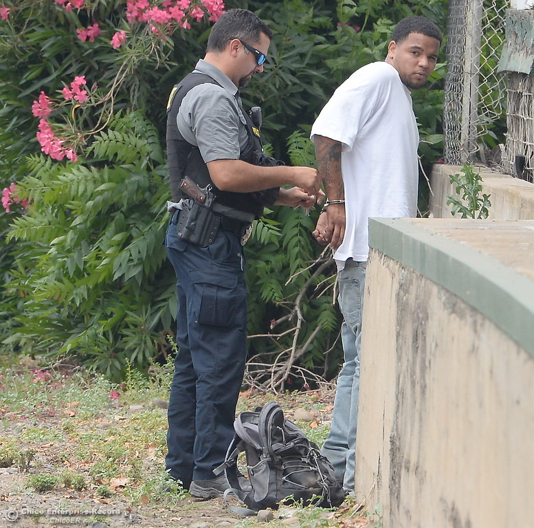 . A man is detained by Police after reports of a shooting near Cohasset Road in Chico, Calif. Wed. June 7, 2017. (Bill Husa -- Enterprise-Record)