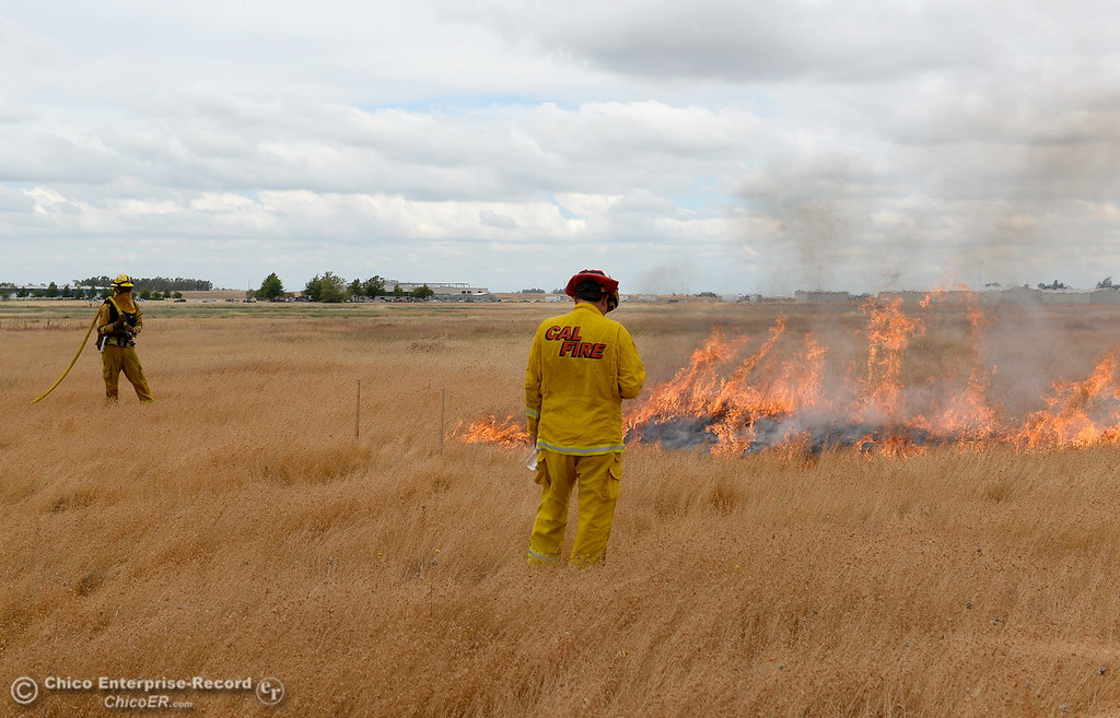 . CAL FIRE/Butte County Fire Department lite controlled burns near the Oroville Airport Monday June 12, 2017. The live burns are training for new firefighters and help firefighters study fire behavior in a controlled environment. (Bill Husa -- Enterprise-Record)