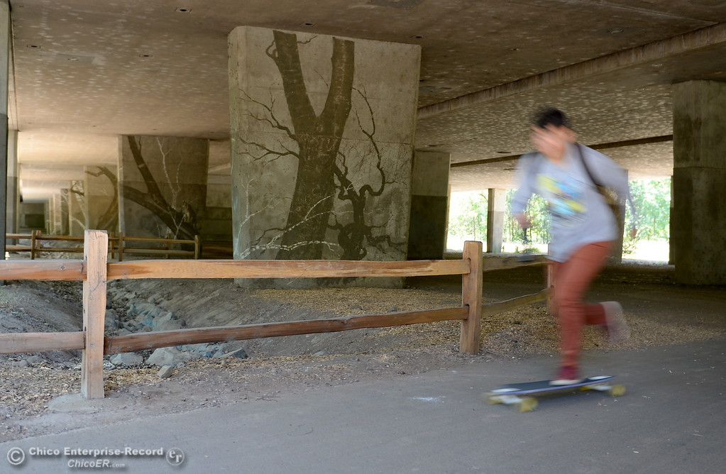 . A skateboarder zips by some artwork on the pillars beneath the Hwy. 99 bridge over Bidwell Park in Chico, Calif. Wed. June 14, 2017. (Bill Husa -- Enterprise-Record)