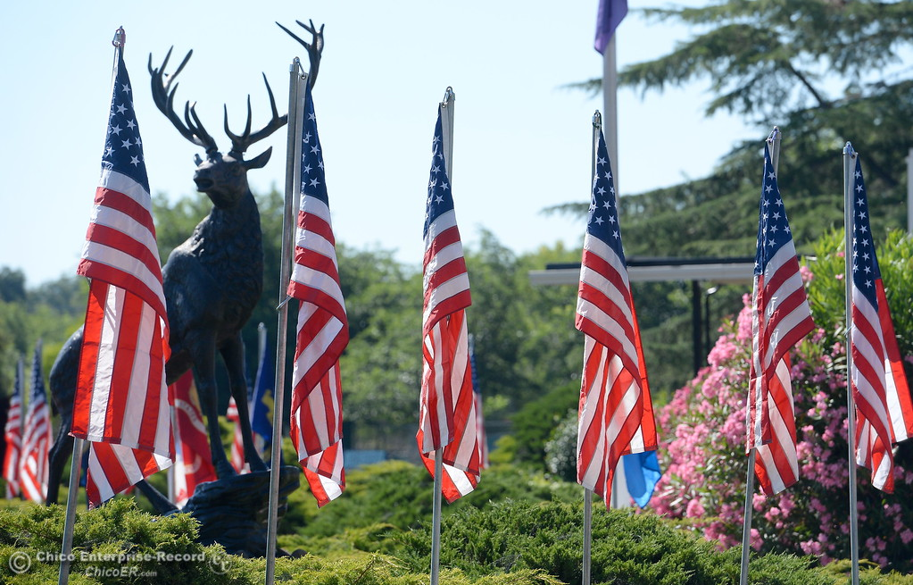 . The Chico Elks Lodge sports a nice flag display in honor of Flag Day in Chico, Calif. Wed. June 14, 2017. (Bill Husa -- Enterprise-Record)