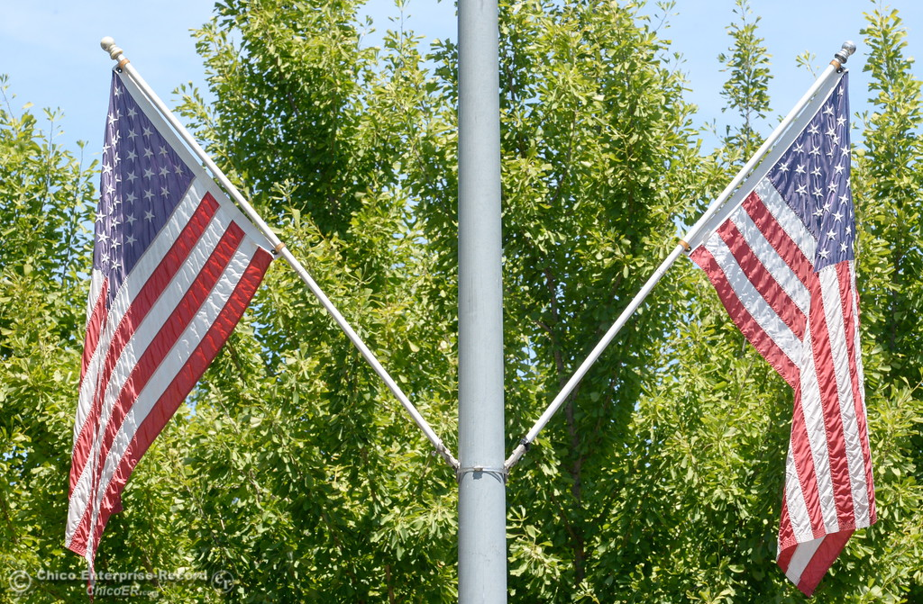 . Drivers along The Esplanade enjoy the flags posted in honor of Flag Day in Chico, Calif. Wed. June 14, 2017. (Bill Husa -- Enterprise-Record)